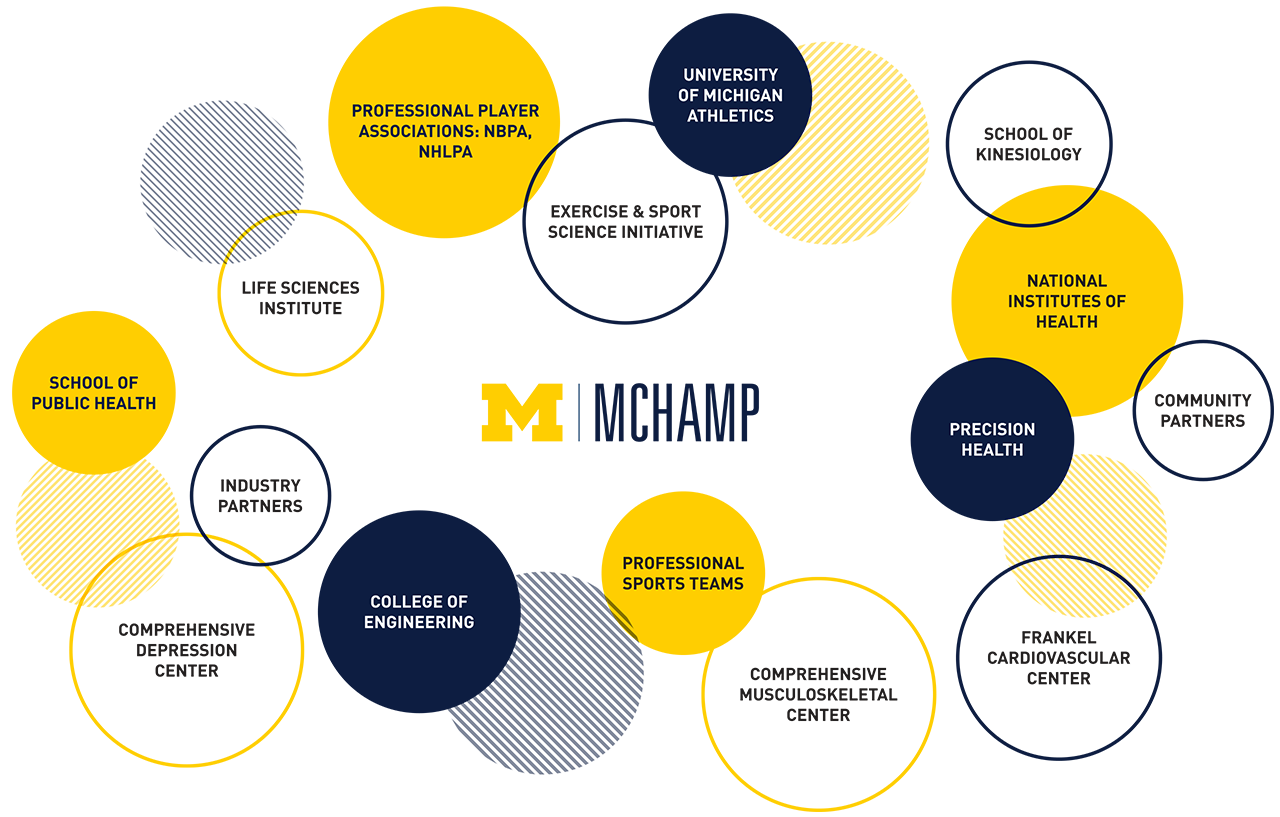 Chart outlining MCHAMP disciplines